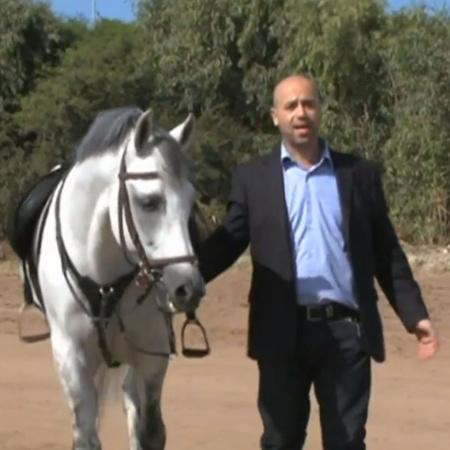 ما هي أهمية الخيول في المغرب؟