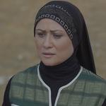 Sabr Al Othoub-14