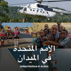 United Nations in Action