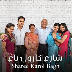 Sharee Karol Bagh